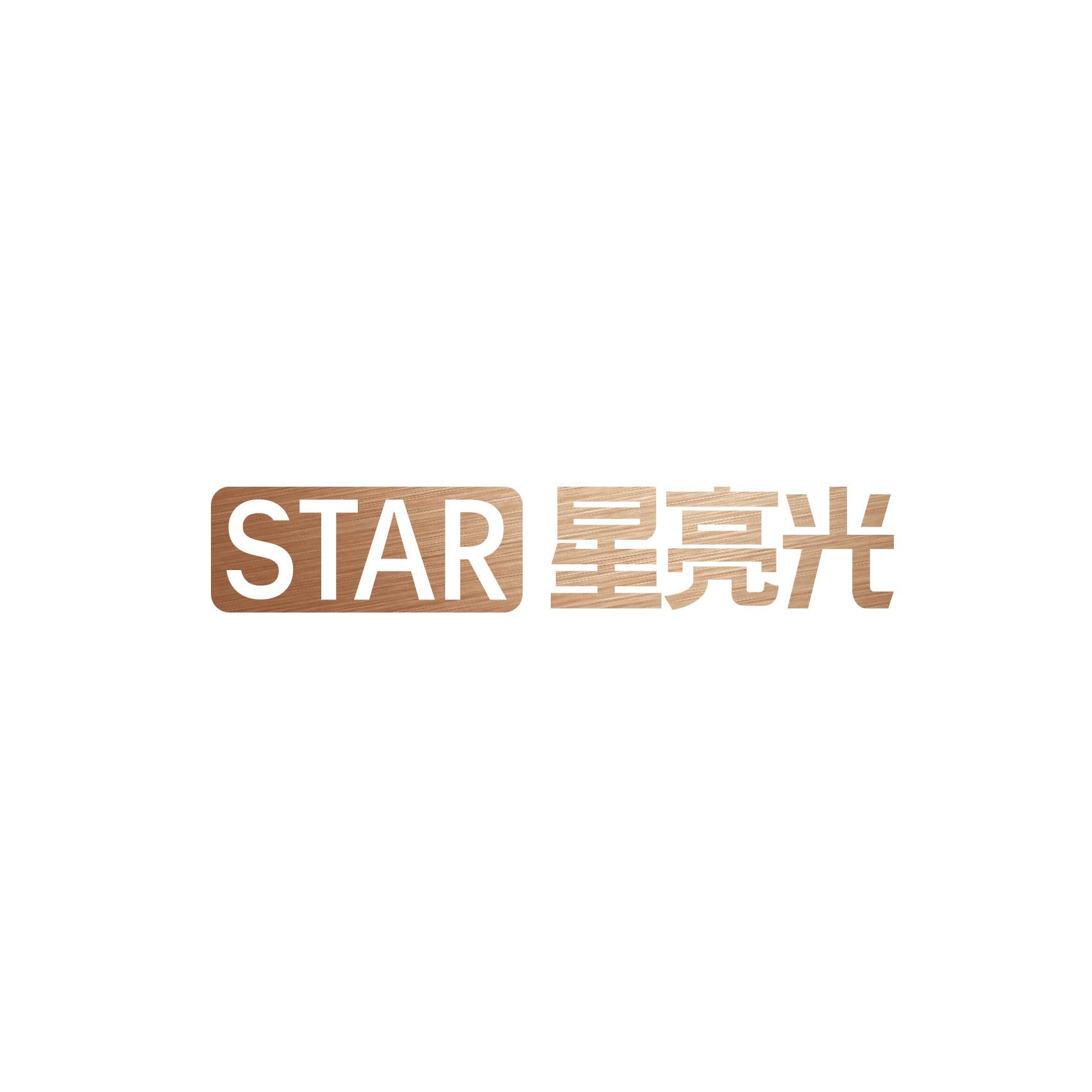星亮光肖像館logo設計